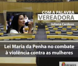 Artigo: Lei Maria da Penha no combate à violência contra as mulheres