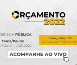 Audiência Pública Virtual – Lei de Diretrizes Orçamentárias – LDO 2022   10/06/2021